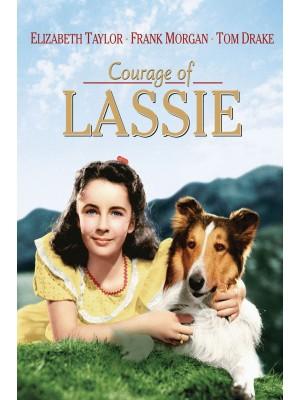 A Coragem de Lassie - 1946