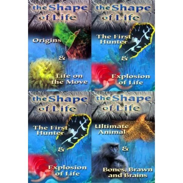 A Origem da Vida - A Evolução das Espécies - Na...