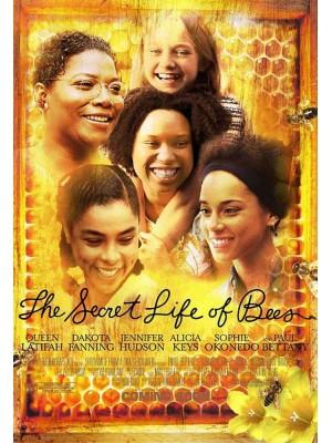 A Vida Secreta das Abelhas - 2008