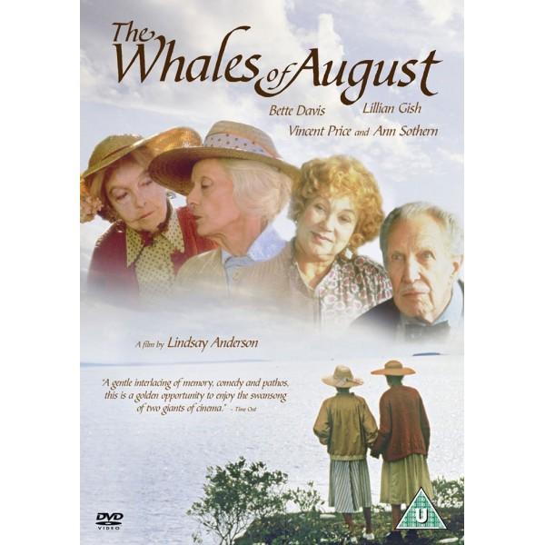 Baleias de Agosto - 1987