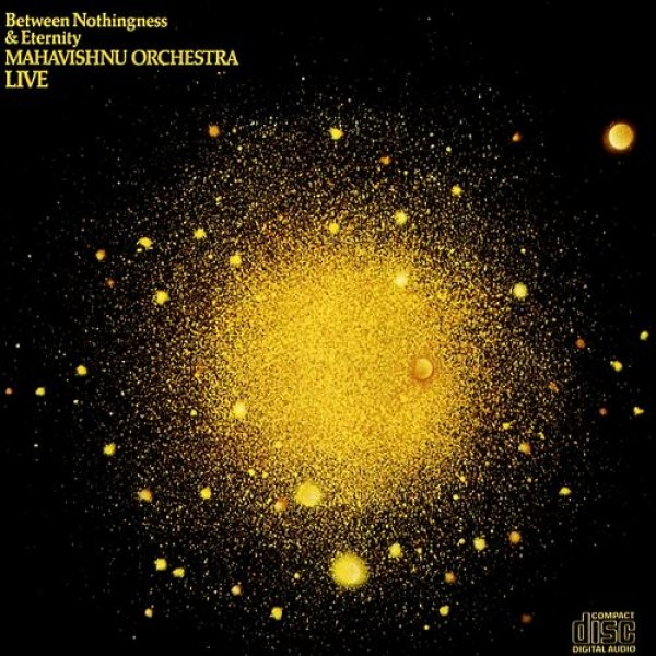 Between Nothingness & Eternity - The Mahavishn...