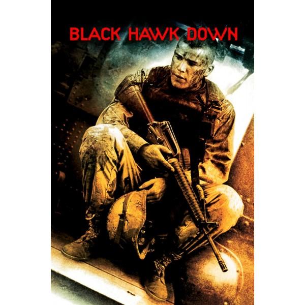 Falcão Negro em Perigo - 2001