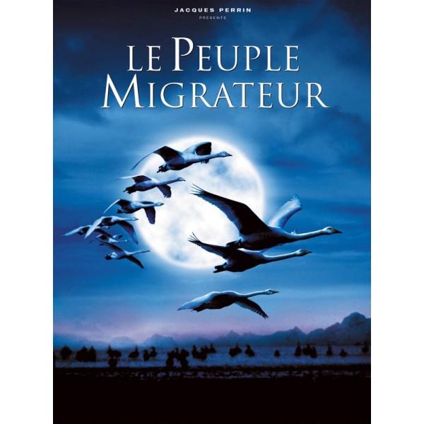 Migração Alada - 2001