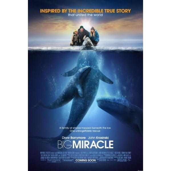 O Grande Milagre - 2012