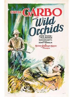 Orquídeas Silvestres | Orquídeas Selvagens - 1929