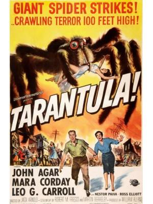 Tarântula! - 1955